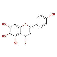 5,6,7-trihydroxy-2-(4-hydroxyphenyl)-4H-chromen-4-one