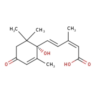(2Z,4E)-5-[(1S)-1-hydroxy-2,6,6-trimethyl-4-oxocyclohex-2-en-1-yl]-3-methylpenta-2,4-dienoic acid